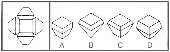 Spatial reasoning test